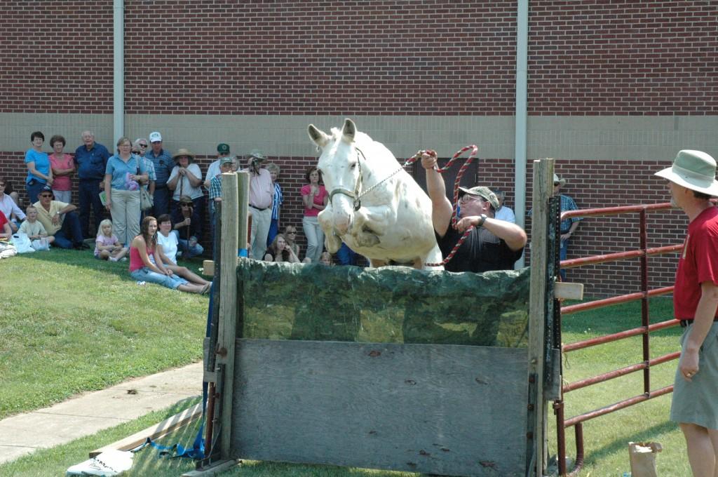 2007 Festival - Mule Jump Demo (13)