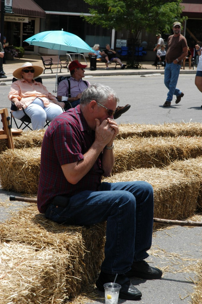 2008 Festival - Harmonica