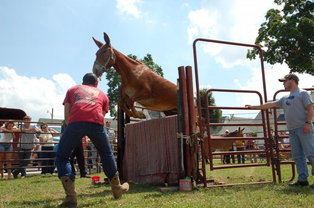 2009 Festival - Mule Jump (12)