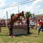 2009 Festival - Mule Jump