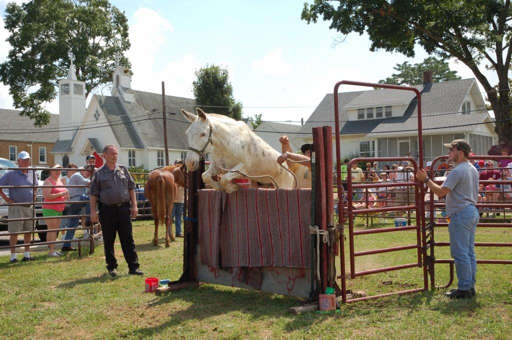2009 Festival - Mule Jump (19)