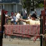 2009 Festival - Mule Jump (22)