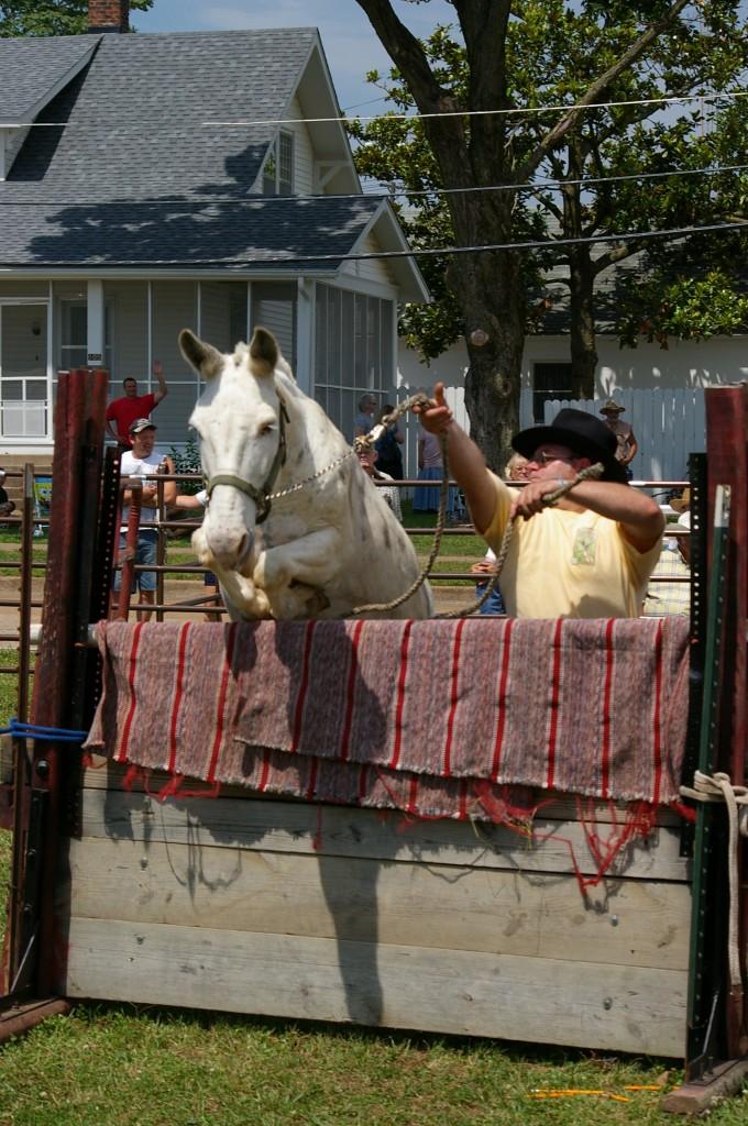 2009 Festival - Mule Jump (23)