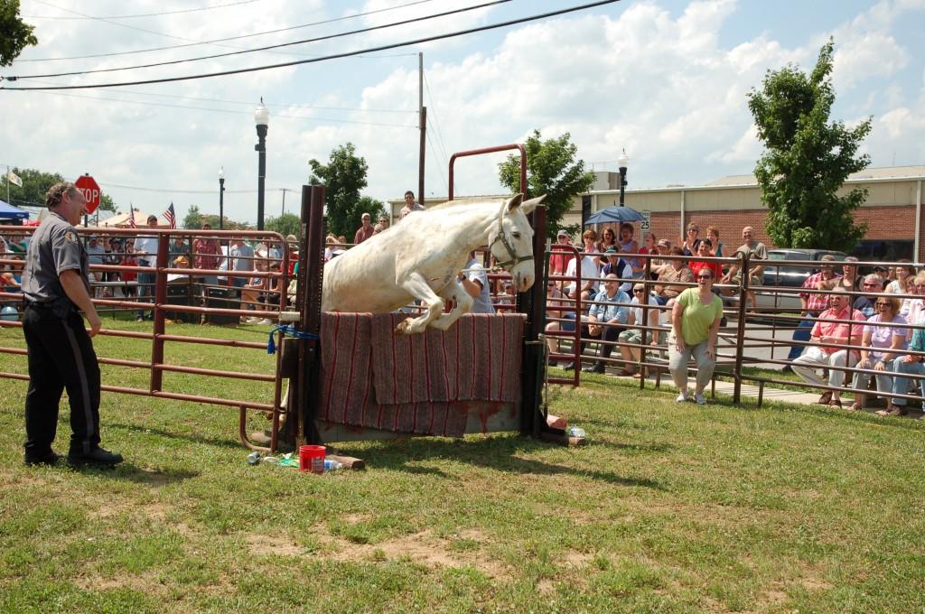 2009 Festival - Mule Jump (6)