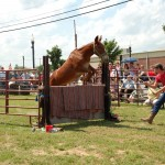 2009 Festival - Mule Jump (7)