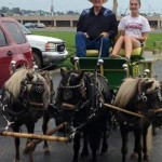 2015.FestivalPhoto.LoranCockrumMiniatureHorsesAndWagon