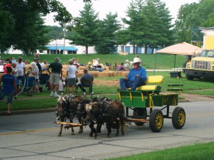 2015.FestivalPhoto.LoranCockrumMiniatureHorsesAndWagon2