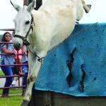 mule jump 2 (KL)